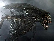 "Reflections on the ""Alien"""