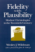 Fidelity With Plausibility, by Wesley J. Wildman